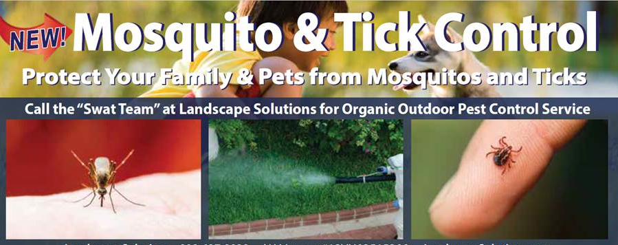Protect Your Home from Mosquitoes and Ticks