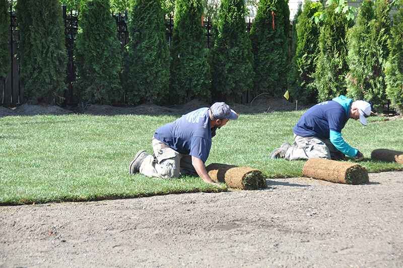 People are doing sod installation