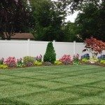 Backyard Landscaping Digital Design
