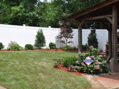 Backyard Landscaping with Sod and Evergreens