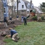 Uniformed Landscaping Crew Laying Sod