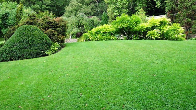 12 Tips – Water Your Lawn More Efficiently