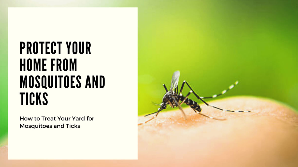 Protect-Your-Home-from-Mosquitos-and-Ticks