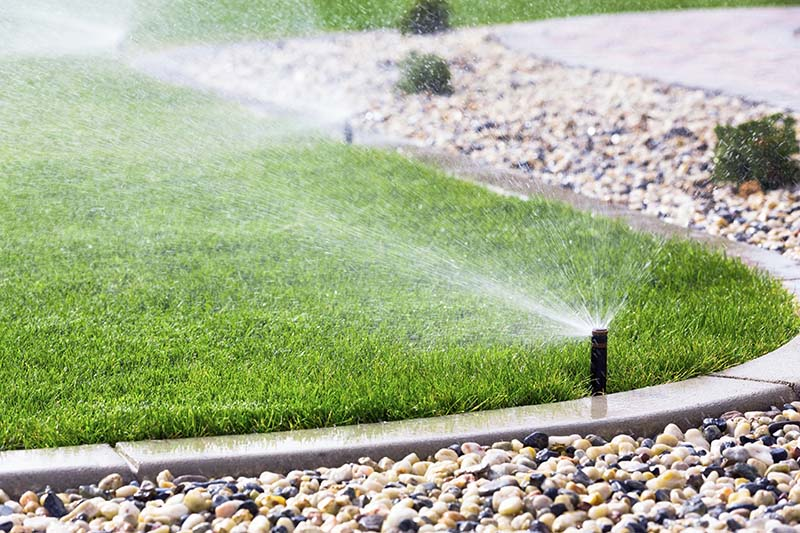 Proper drainage solutions is the important part in Lawn renovation.