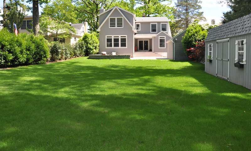 best-areas-for-sod, new sod installation in back yard