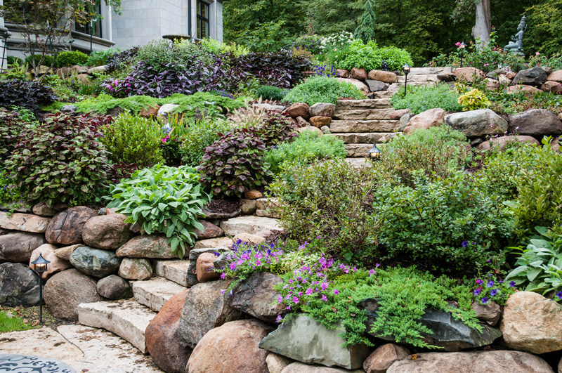 Tiered Garden with Hardscaping and Softscaping