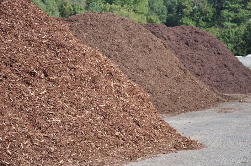 Kinds of Mulch
