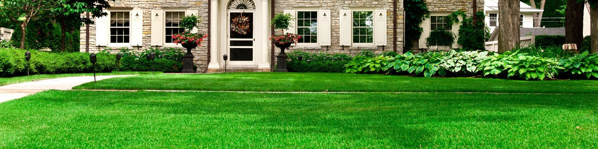 Lawn Maintenance - Perfectly maintained front lawn and garden